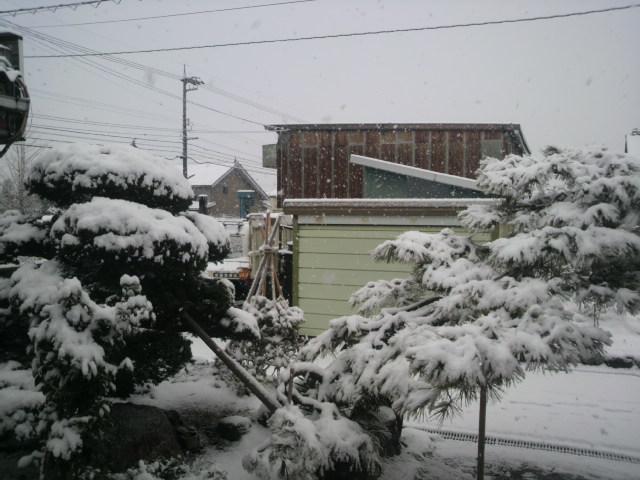 また雪だ…